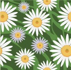 白色花朵植物矢量素材