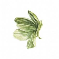 绿色蔬菜装饰图案