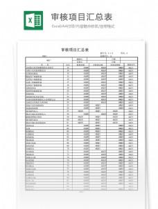 审核项目汇总表