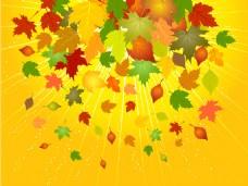 矢量秋天的落叶素材