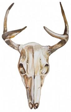 民族元素动物头骨透明素材