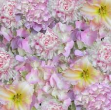 粉色花卉背景