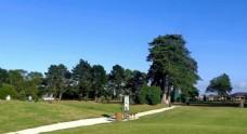 奥克兰高尔夫球场风景