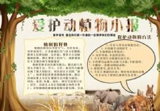 爱护动植物手抄/爱护动植物小报