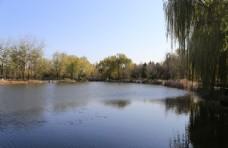 深秋植物园