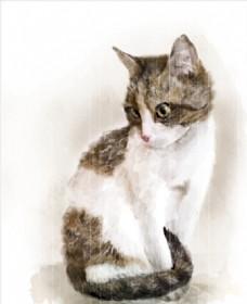 手绘水彩画小猫矢量图下载
