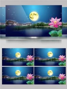 梦幻中国风古典园林荷花高清视频素材