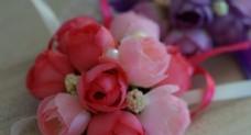 微距粉红色多头茶花