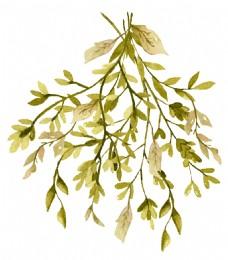 秋日茂密树枝卡通透明素材