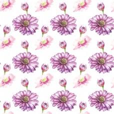 紫色清新小雏菊透明素材