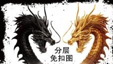 金龙王黑龙王设计