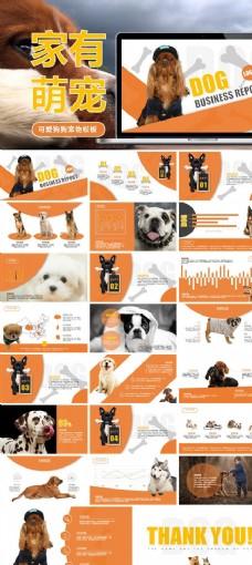 宠物狗饲养品种介绍动态PPT