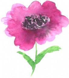 紫边花蕾卡通透明素材