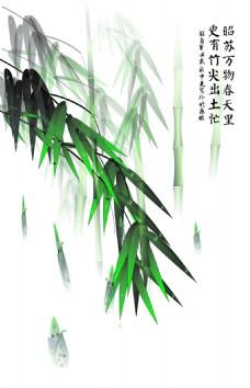 中国风高风亮节雨竹装饰画