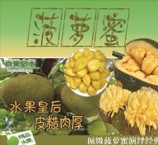 菠萝蜜海报
