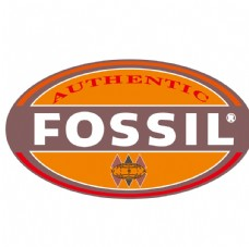Fossil标志